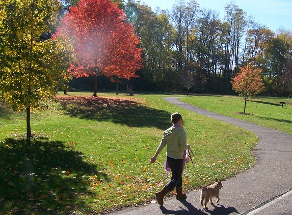 Woman walking her dog through Water Works Park.